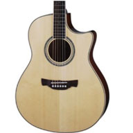 Acoustic Guitar Product Range
